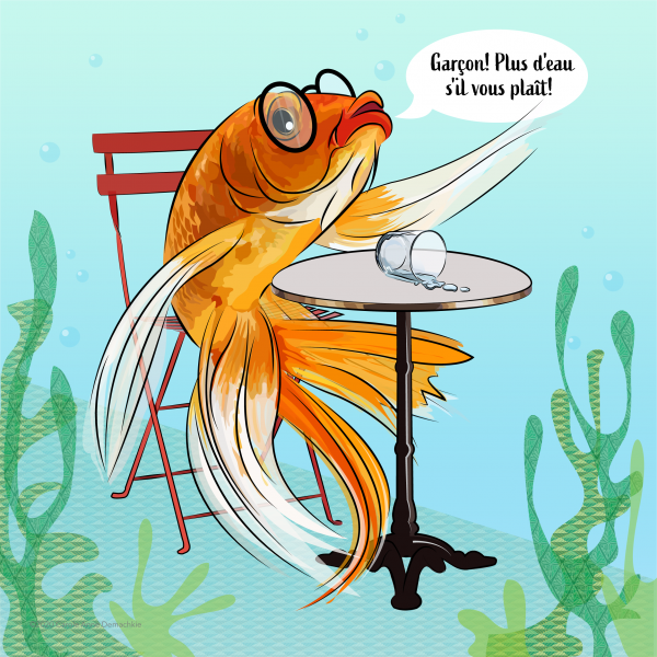 illustration of A Fish out of Water