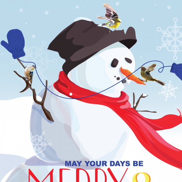 detail of snowman and bird illustration by The Red Barn Press