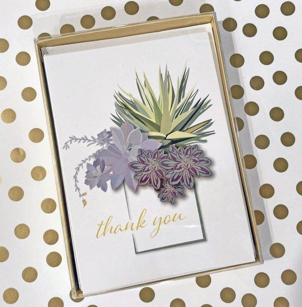 illustration of succulents for a thank you message