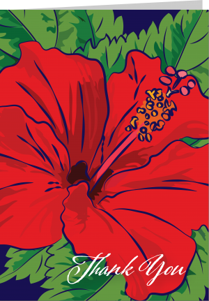 Illustration of red hibiscus by The Red Barn Press