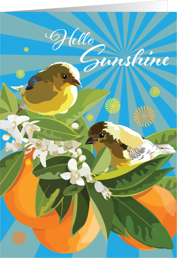 Illustration with birds, oranges and orange blossoms