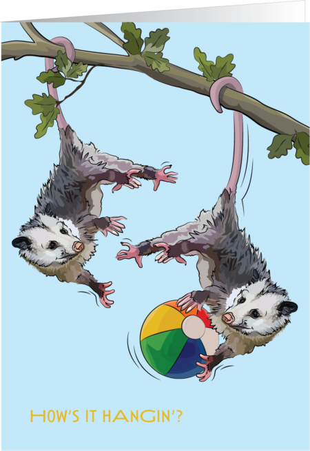 Opossums hanging from a tree, playing ball.